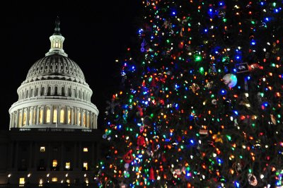 Perfect Colorado tree sought for U.S. Capitol