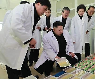 North Korea's food supply at focus of Kim Jong Un's policy