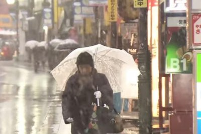 Tokyo hit by first November snowfall in 54 years