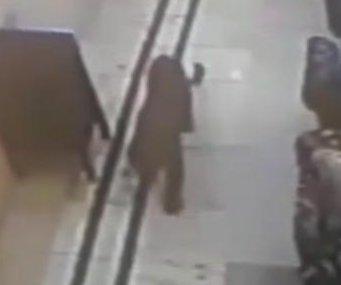Wild leopard wanders into hotel lobby