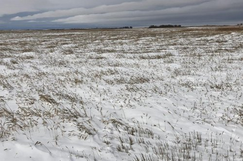Many Great Plains crops might be lost to floods, blizzard