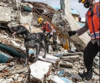 Indonesian earthquake death toll reaches 84