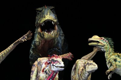 Dinosaurs were in decline before the asteroid hit