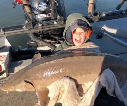 Tennessee boy reels in massive, 80-pound lake sturgeon