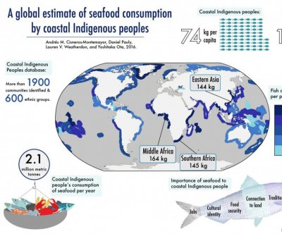 Indigenous people eat 15 times more seafood than non-indigenous people