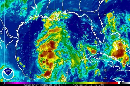 Remnants of Tropical Storm Harvey to form into depression