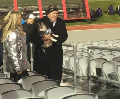 Bill Belichick brings puppy to 'Terriers' lacrosse game