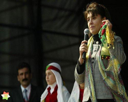 Kurds protest arrest of activist in Turkey