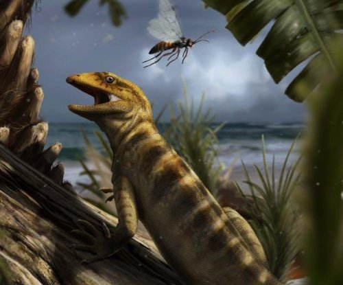 Ancient fossil fills a 75 million-year gap, rewrites lizard history
