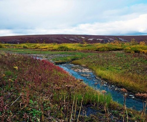 Greening continues across Arctic ecosystems