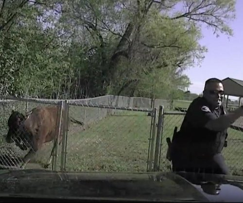 Texas police officer narrowly dodges charging cow