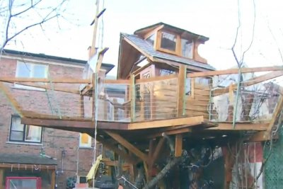 Toronto man ordered to remove $30,000 boat-treehouse