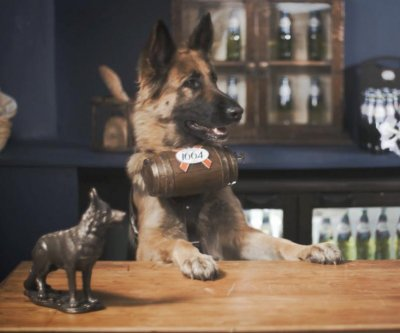 French beer company to open dog-staffed London pop-up bar