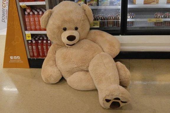 Look Seductive Bear Baffles Shoppers In Store S Frozen