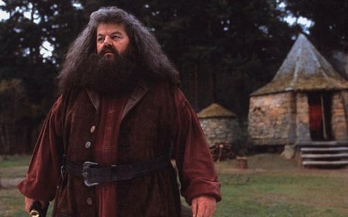 J.K. Rowling to build 'Hagrid hut' on her estate
