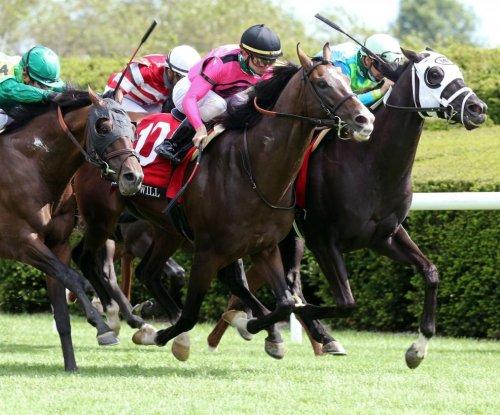 Top-shelf turf racing at Woodbine tops weekend horse racing