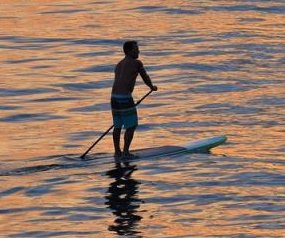 Paddleboarder's lost phone fished out of sea by beachgoer