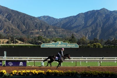 Racing canceled at Santa Anita after rash of horse deaths