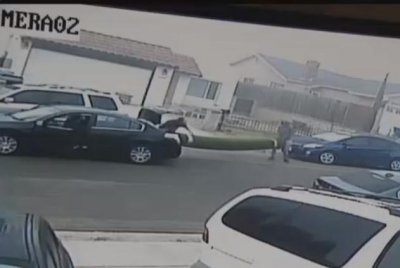 Thieves steal California woman's new lawn