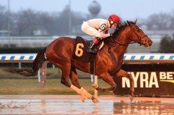 UPI Horse Racing Roundup: Audible's loss keys weekend of racing upsets