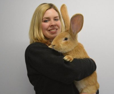 Scottish charity seeks home for dog-sized rabbit