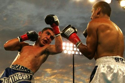 Boxers, MMA fighters see changes in brain damage over time