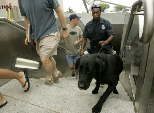 Bomb-sniffing dog/human teams growing