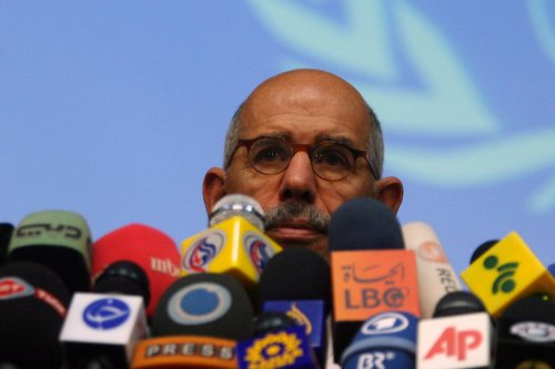 ElBaradei receives warm welcome in Egypt