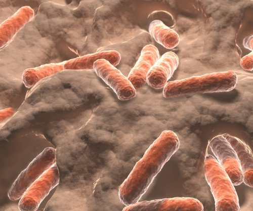 Study examines role of gut bacteria in neurodegenerative diseases