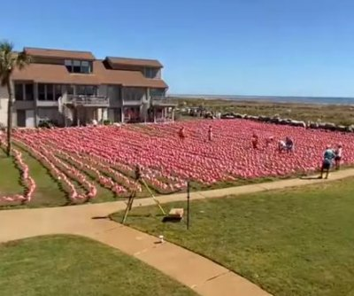 Resort breaks Guinness record with 3,753 plastic flamingos