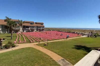 Resort breaks Guinness record with 3,753 plastic flamingos