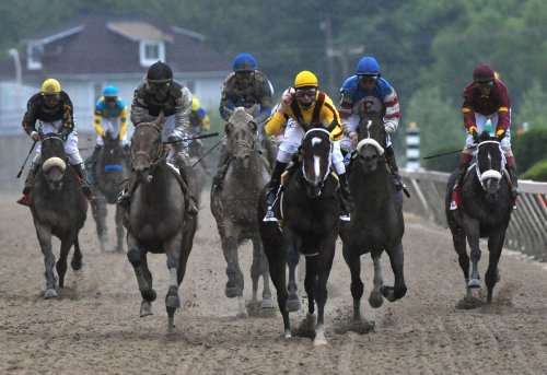 Rachel Alexandra, Zenyatta battle proposed