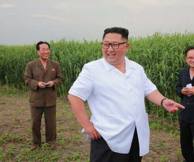 USDA: 60% of North Koreans are food insecure