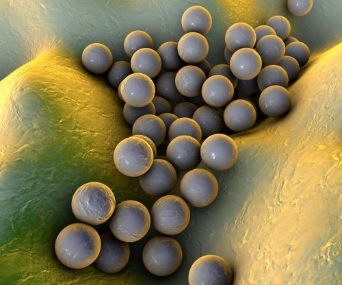 Study finds new genetic mutations behind antibiotic resistance