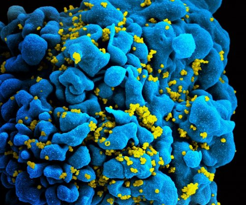 Children with immunities may be key to HIV treatment