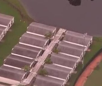 Florida students moved from classrooms after gator sighting