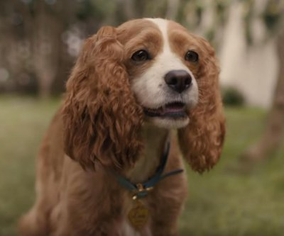 'Lady and the Tramp' comes to life in new live-action trailer