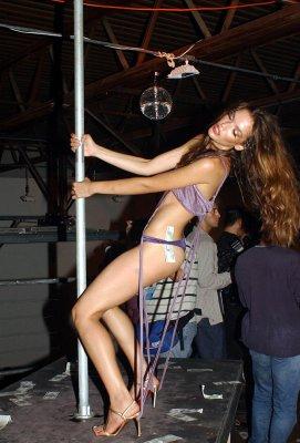 Stripper in illinois