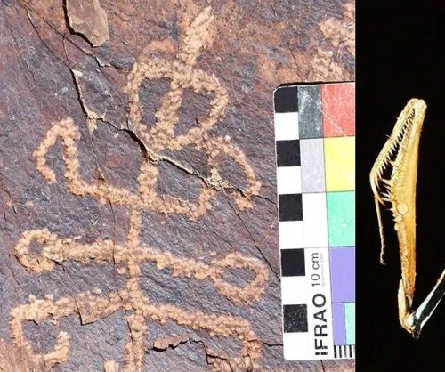 Ancient cave carving depicts six-legged mantis-man