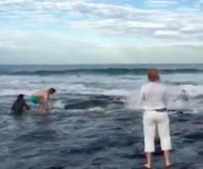Australian beachgoers rescue stranded baby whale