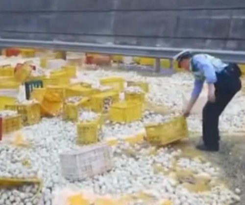 Semi truck crash covers road in thousands of broken eggs