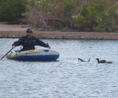 Arizona man uses inflatable raft to rescue entangled duck