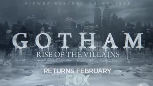 'Gotham' casts Lori Petty, Michael Bowen, teases Mr. Freeze