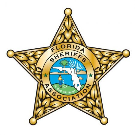 Over 130 busted in Tampa Bay-area child sex sting