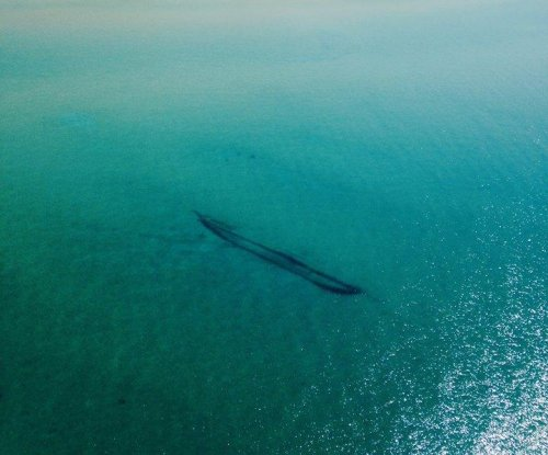 Coast Guard shares Michigan shipwreck photos taken from the air