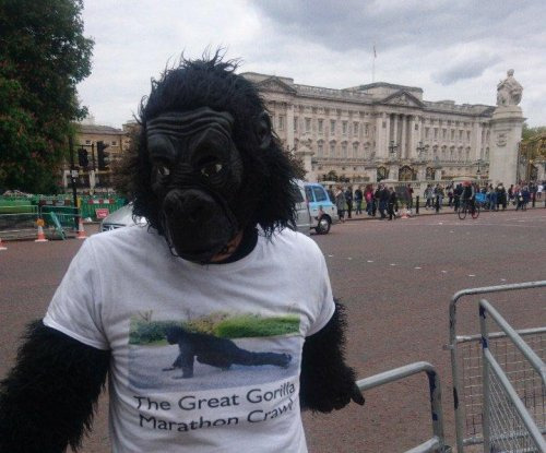 'Mr. Gorilla' crawls through London Marathon for charity