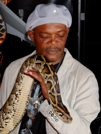 Florida offers python 'amnesty' day