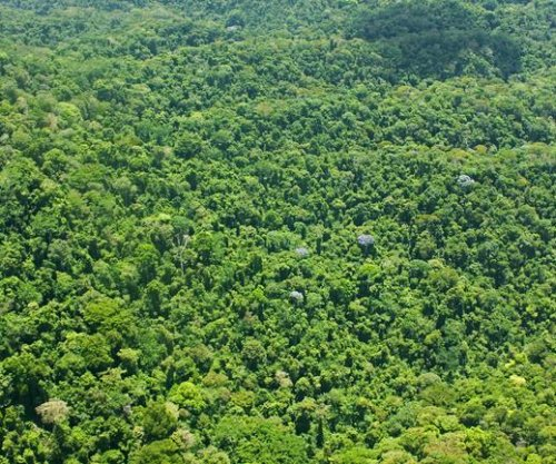 Archaeologists discover 'City of the Monkey God' in Honduras jungle
