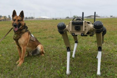Robot security dogs start guarding Tyndall Air Force Base