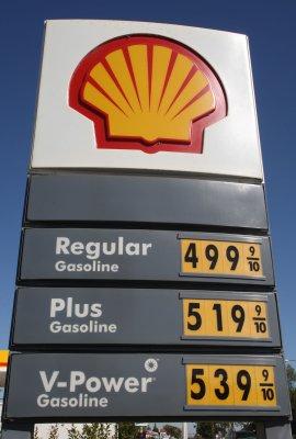 Royal Dutch Shell picks new CEO